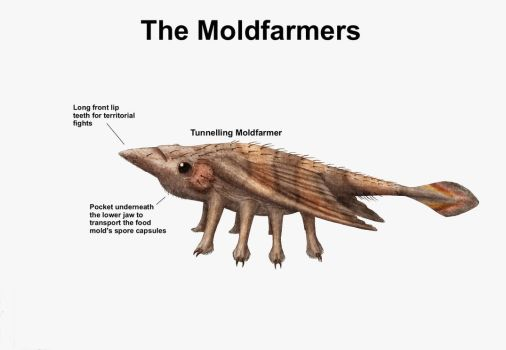 REP: The Moldfarmers by Ramul