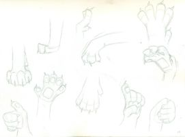 Paw Practice Sketches by wahyawolf