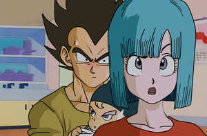 sometido a bulma by salvamakoto