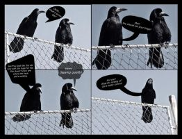 Funny crows by Fantasia-Art