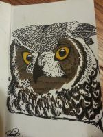Owl Face. by WolvesHowl457