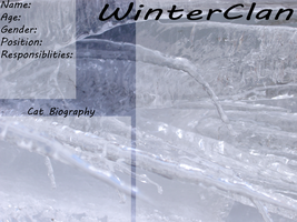 WinterClan Ref Sheet by DracKeagan