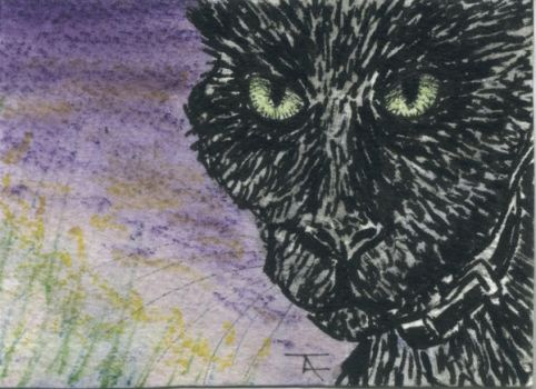 Ken - ACEO - SOLD by Orchid-Black