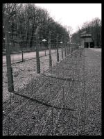 Fence: South Side by deadward1555