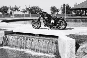 Bobber at the bridge. bw by StallionDesigns