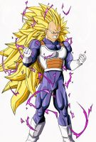 Vegeta Super Saiyan 3 by B-1ne
