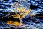 Tahoe Wave Catching Light from a Sunset by sellsworth