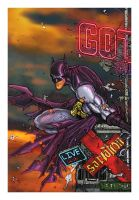 Batman colors by TMD by DONAHUE-t