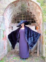 Witch of the Waste (Howl's Moving Castle) by janvalek666