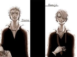 Zoro Sanji by ert7bear