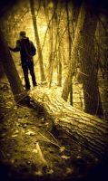 Sepia Seclusion by Silent-Earth3