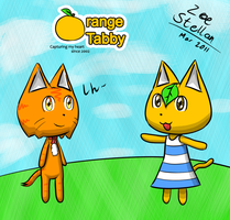 Orange Tabby by hebi37