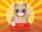 Bad Luck Cat by noakrank