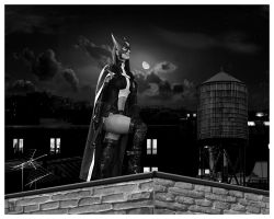 Huntress Rooftop by Hillz01
