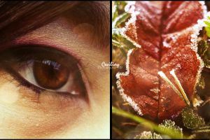 What I see by ceciliay