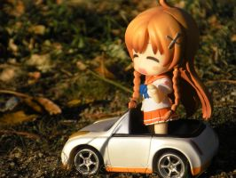 Mirai driving happy by PokepictureFigurefun