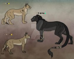 big cats by Cerberus-Dragonfly