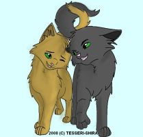 Leafpool and Crowfeather by toph-twilight-rules