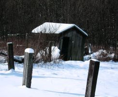 A Shed In Winter by hollysfollys