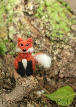 Foxie Loxie by RaeosunshinePets