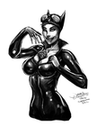 Catwoman (Daily Sketch Challenge) by jameslink
