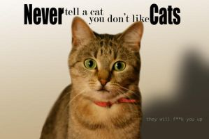 Don't Tell a Cat by iRictor