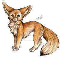 Fennec Fox by CaptainMorwen