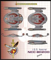 I.S.S. Kestrel NCC-80200 by stourangeau