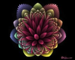 Another Spiky Flame Flower by wolfepaw