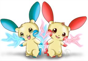 Plusle and Minun Attack Together!!!