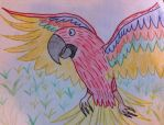 Red macaw by Stormflygirl