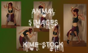 Animal 3 by kime-stock