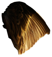 Pine Siskin Light Wing 03 by Treeclimber-Stock