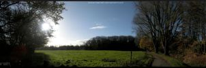 By the willows - panorama by Miarath