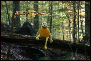 Eric in the woods - Autumn by fuchi