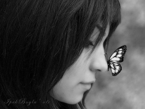 The Butterfly Effect by epack