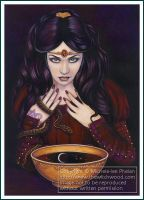 Tarot - The Oracle - Witch by ravynnephelan