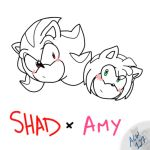 ShadxAmy Doodle by alleycatwoman127