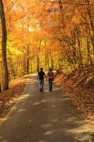 The Road Less Traveled By (Autumn) V by SparkVillage