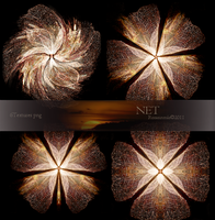 Pack Textures Net by ROSASINMAS