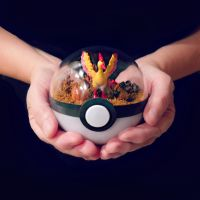 Team Valor Poke Ball Terrarium by TheVintageRealm