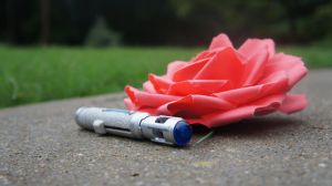 Rose and Sonic Screwdriver (full color) by DragonFreedom6