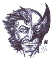 The Wolverine by sebatman
