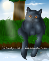 .: Hi there.I am Yellowfang :. by Freaky--Like--Vivi