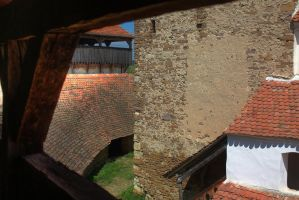 View from the Tower 1 by mariustipa
