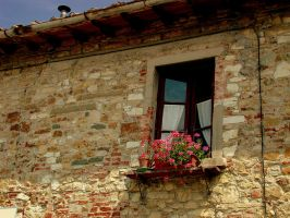 lone window by dale427