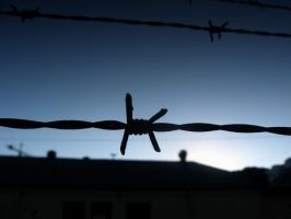 Barbed Wire. by hanovarianx