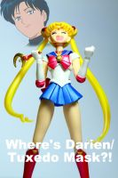 SH Figuarts Sailor Moon: Missing Darien by Grims-Garden00