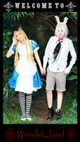 Alice In Wonderland 2 by studioK2