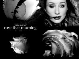 Tori Amos - Rose That morning by anotherpilot